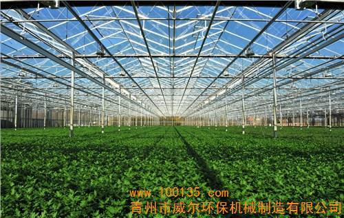 温室大棚设计建造,蔬菜大棚建设,温室大棚厂家,威尔环保机械(图)
